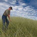Скриншот Tiger Woods PGA Tour 2004 – Изображение 1