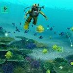 Скриншот Endless Ocean: Blue World – Изображение 13