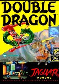 Обложка Double Dragon V: The Shadow Falls