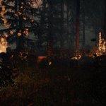 Скриншот The Forest – Изображение 6