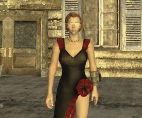 Игрок-маньяк прошел Fallout: New Vegas и все DLC без лечения