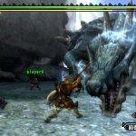 Скриншот Monster Hunter Tri – Изображение 5