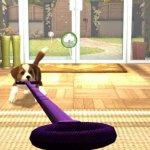 Скриншот PlayStation Vita Pets – Изображение 10