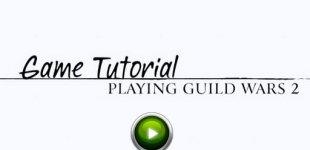 Guild Wars 2. Видео #33