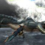 Скриншот Monster Hunter Tri – Изображение 53