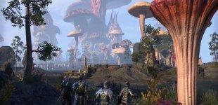 The Elder Scrolls Online: Morrowind. Класс Warden