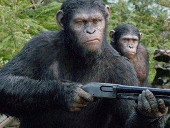 Что нужно знать о«Планете обезьян» перед походом вкино