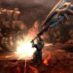 Скриншот Monster Hunter Tri – Изображение 62