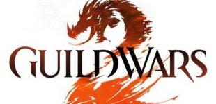 Guild Wars 2. Видео #8