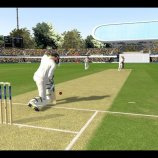 Скриншот Ashes Cricket 2013