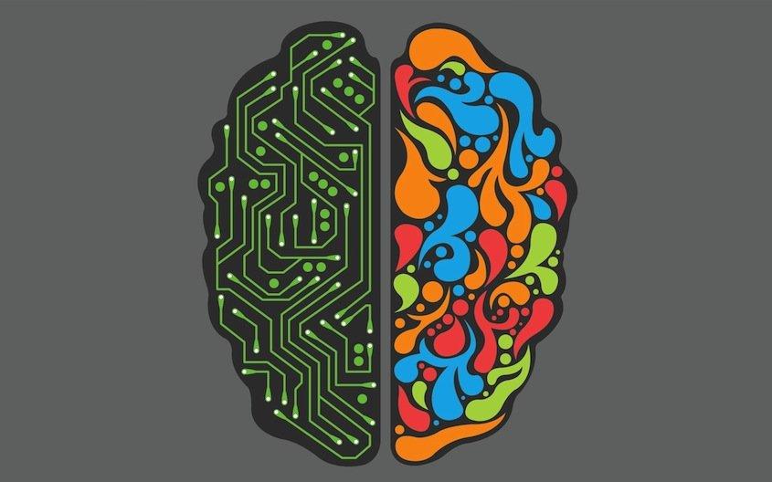 Вот такая «Люси»: 7 мифов о мозге - Изображение 7