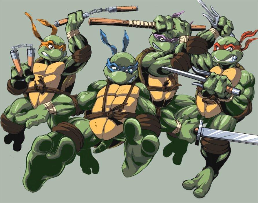 Панцирь как рубашки: история черепашек-ниндзя - Изображение 1