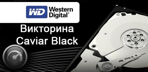 Викторина Caviar Black от Western Digital. Старт - Изображение 1