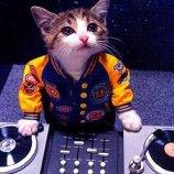 Скриншот DJ Hero – Изображение 1