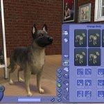 Скриншот The Sims 2: Pets – Изображение 23