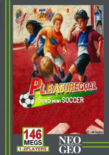 Pleasure Goal: 5 on 5 Mini Soccer