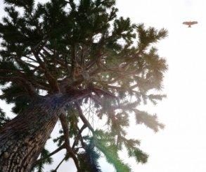 Этот мод для Skyrim сделает растительность по-настоящему реалистичной