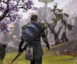 The Elder Scrolls Online запустили с Oculus Rift