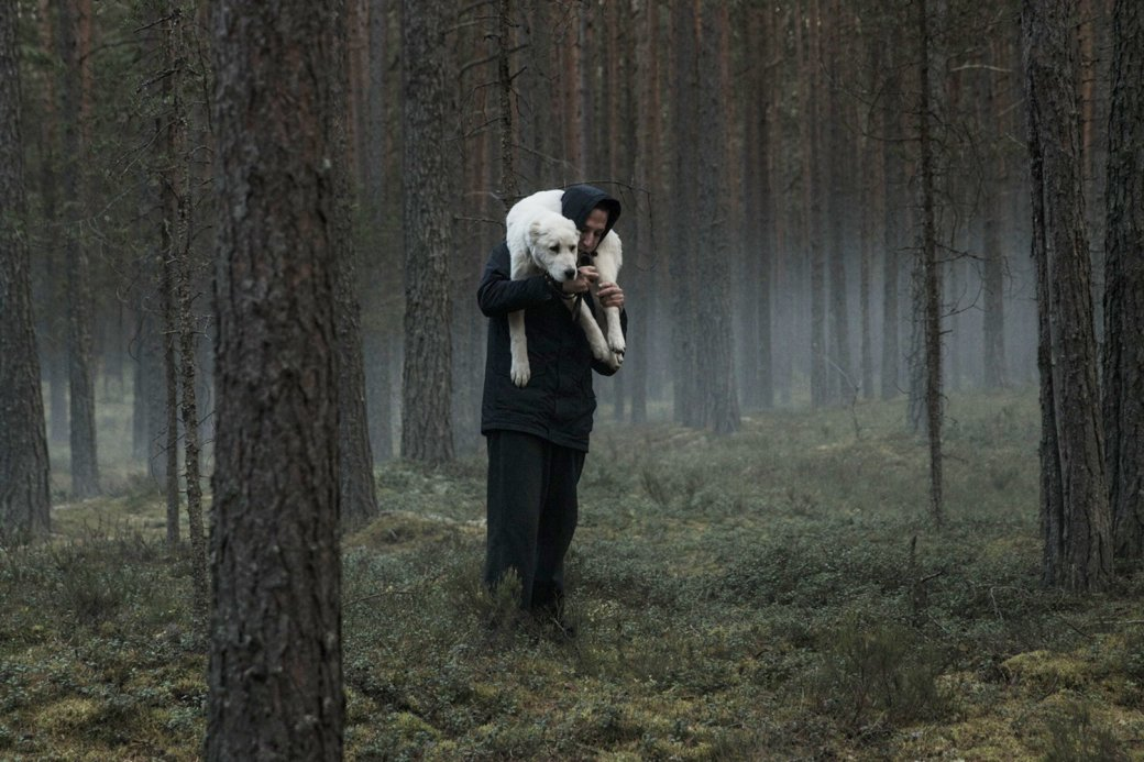 Лучшие российские фильмы 2010-2019 - топ самых интересных фильмов десятилетия, снятых в России | Канобу - Изображение 6326