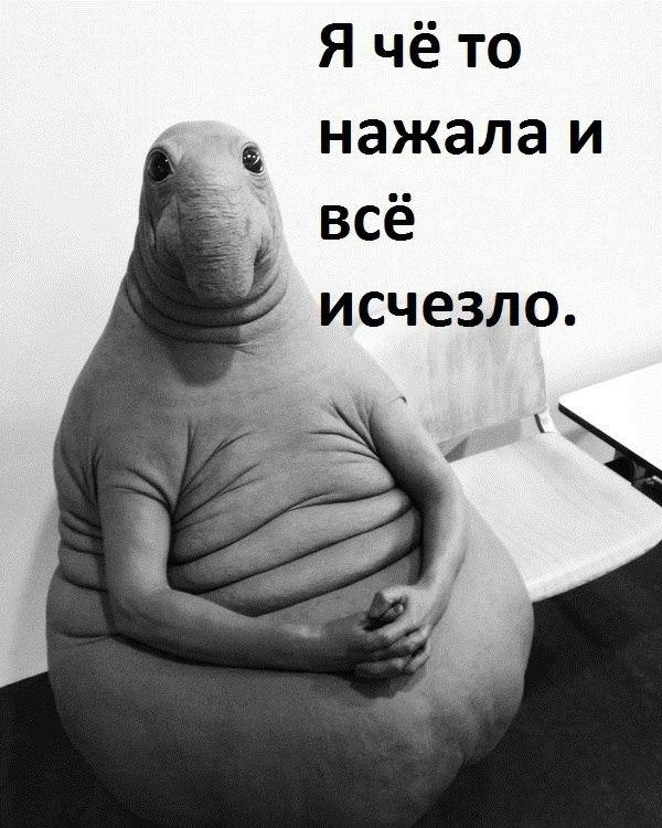 Самые лучшие приколы и смешные мемы 2017 - подборка за год   Канобу - Изображение 2